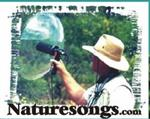 Nature Songs button